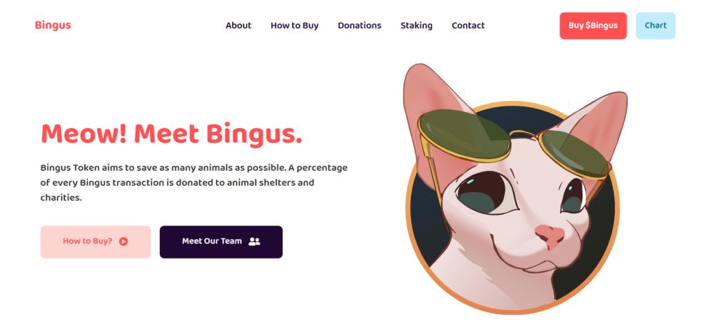 Bingus charity coin website