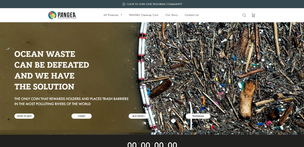Pangea charity coin website design
